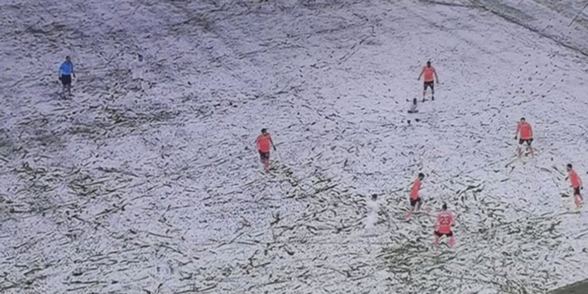 Nobody Can Work Out How Many Soccer Players Are Wearing White in This Photo