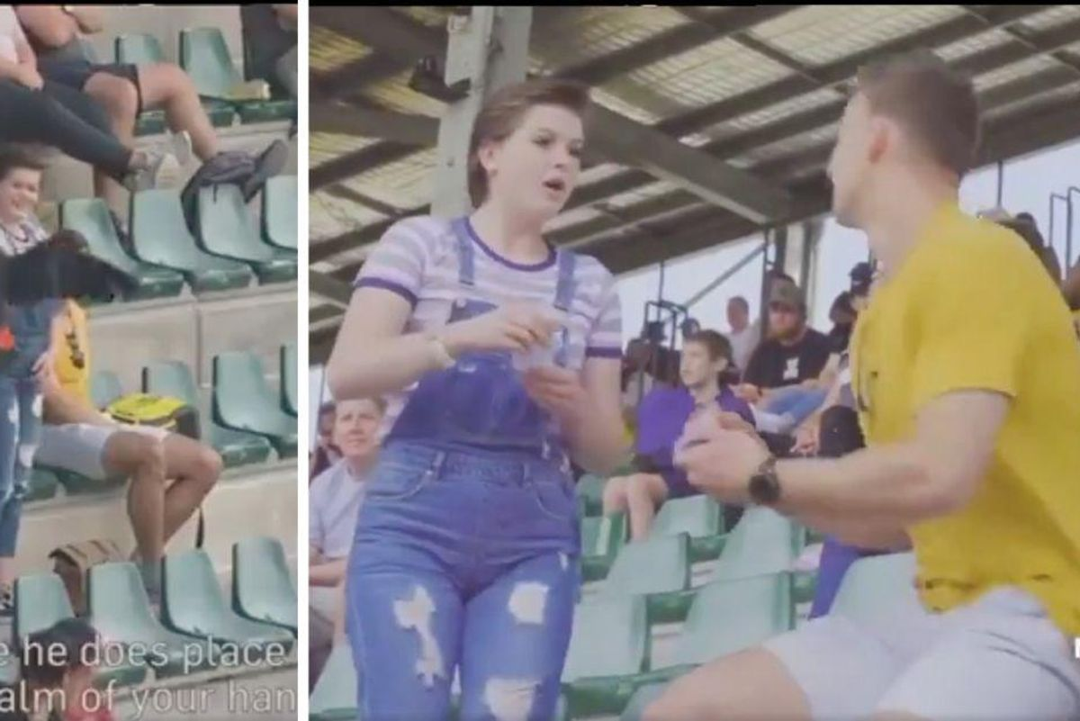 Man enlists the help of a cockatoo for one of the most unique proposals ever caught on video