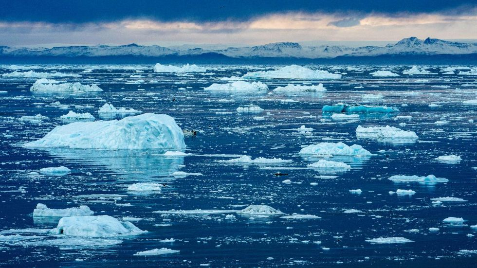 photo of Climate Change Will Be Sudden and Cataclysmic Unless We Act Now image