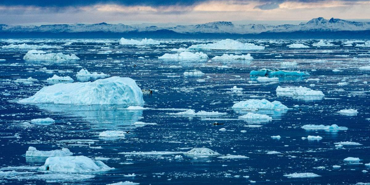 Climate Change Will Be Sudden and Cataclysmic Unless We Act Now