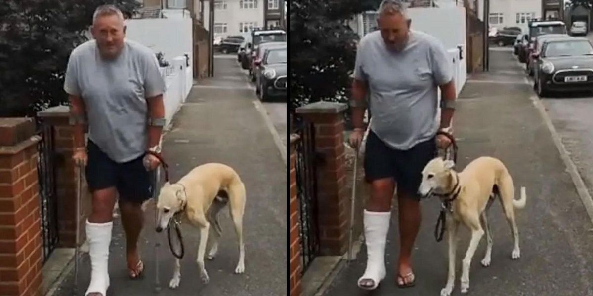 Injured Dog Owner Spends $400 on Vet Because His Dog Is Limping but Finds Out He Was Copying Out of Sympathy