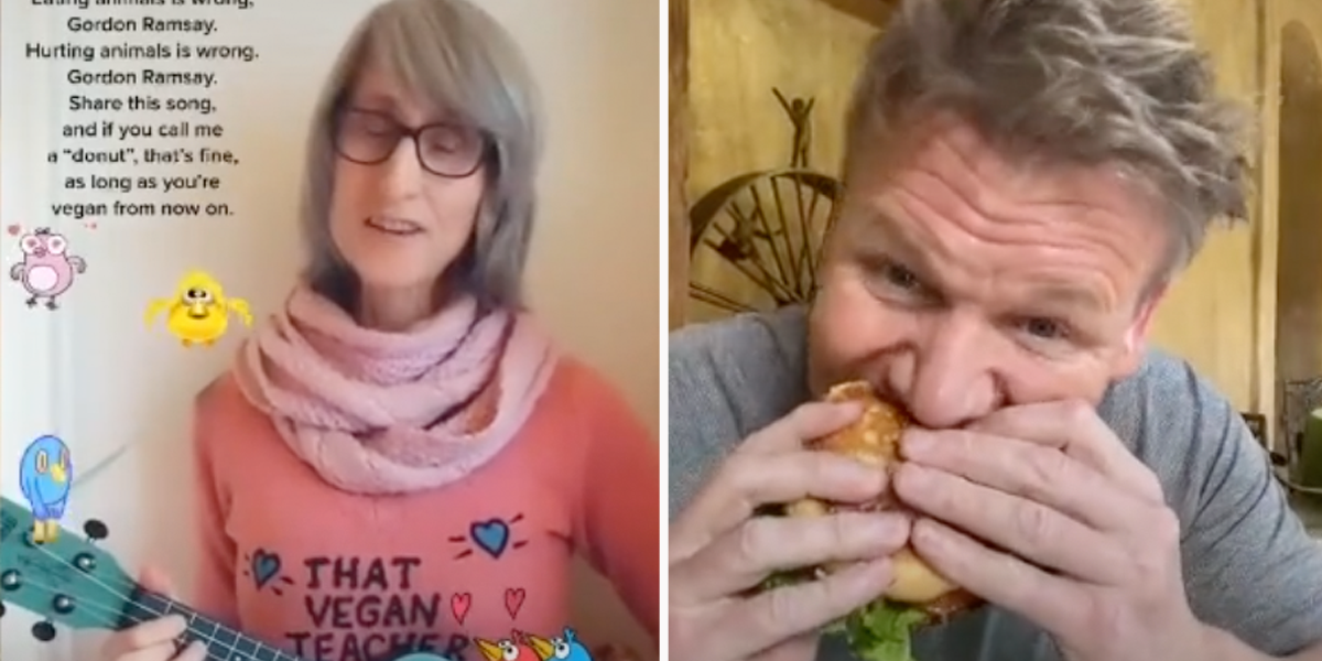 Vegan TikToker Calls Out Gordon Ramsay For Eating Meat So He Responds By Stuffing A Hamburger in his Mouth