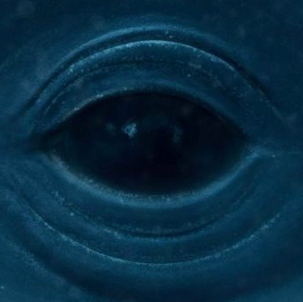 """Listen to New Frank Ocean Track, """"Blue Whale"""""""