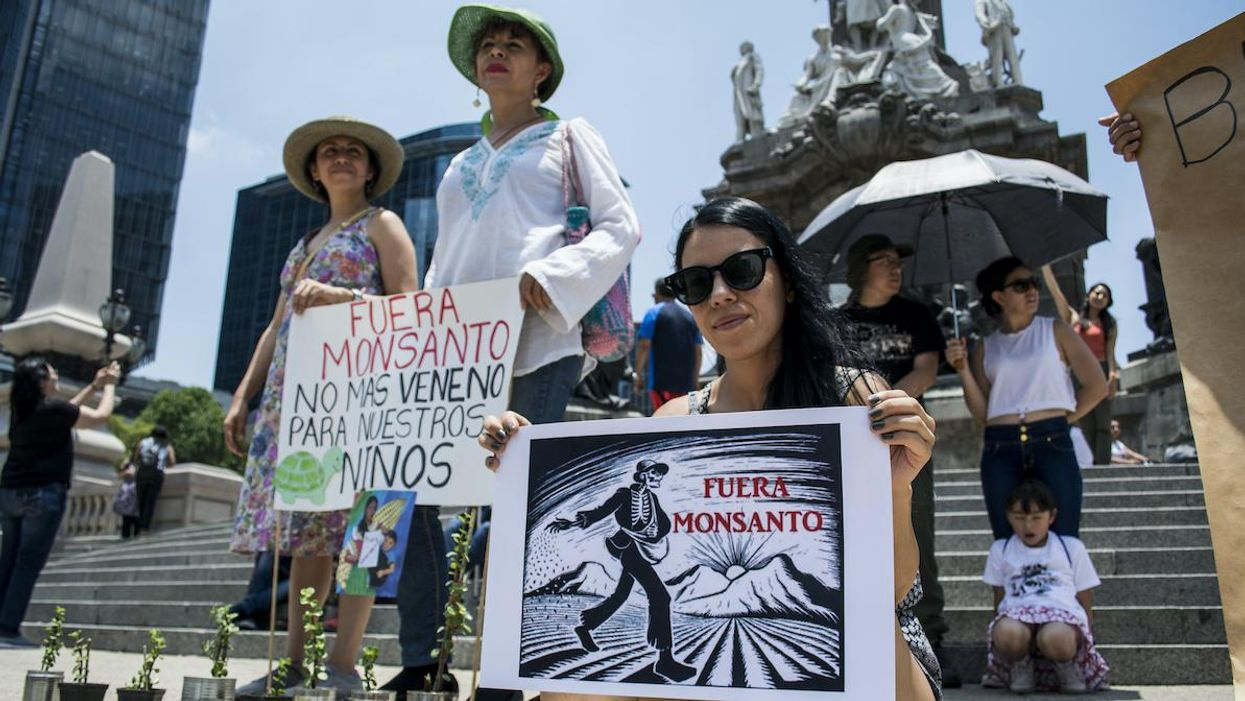 Emails Reveal: U.S. Officials Sided With Agrochemical Giant Bayer to Overturn Mexico's Glyphosate Ban