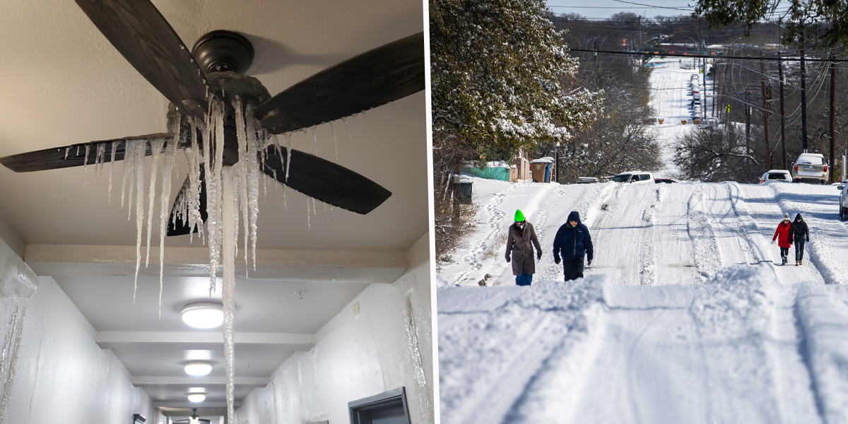 Frozen Ceiling Fan Photo Shows Brutal Reality of US Cold Snap
