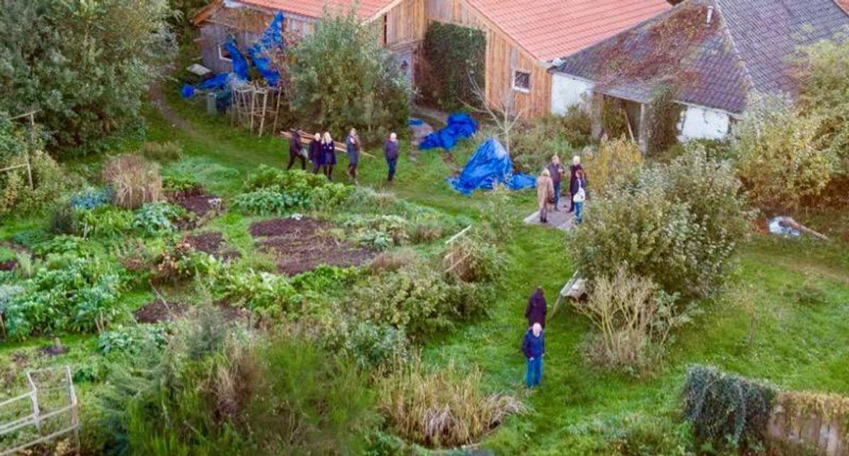 Dutch farm cult dad unfit for trial: prosecutors