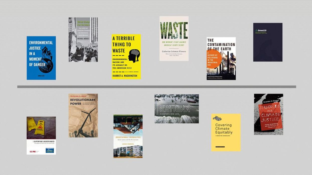 The Latest Books and Reports Covering Environmental Racism and Justice