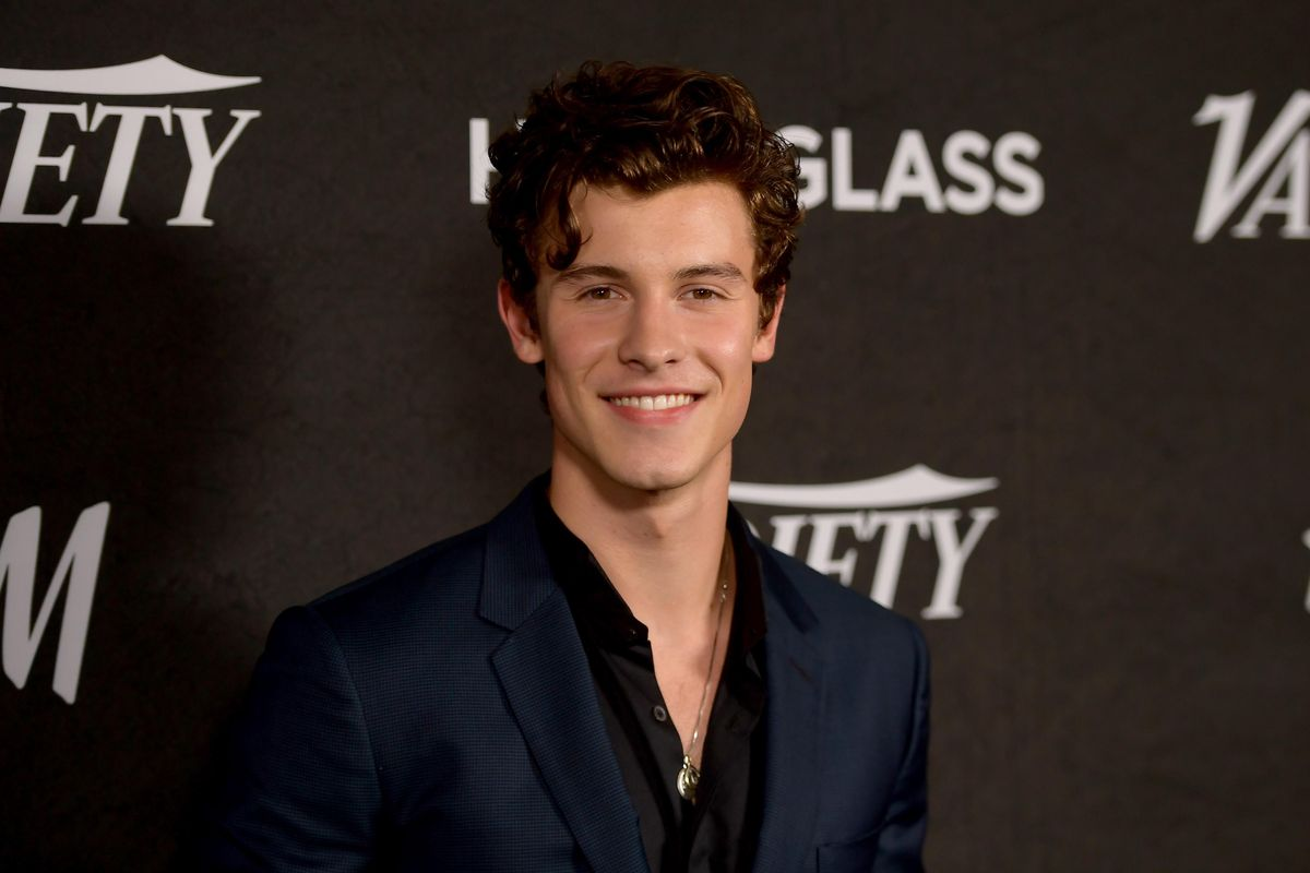 Shawn Mendes' Haircut Divides Fans