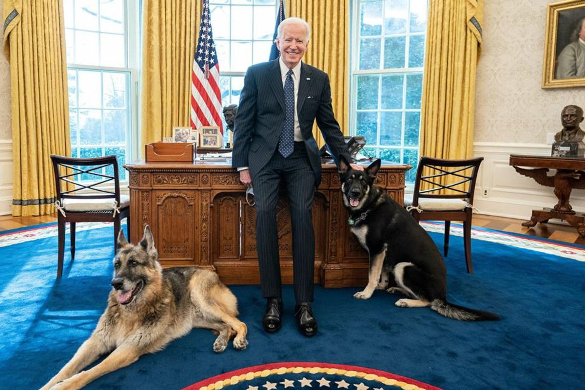 President Biden poses with his 'First Dogs' in a legendary Oval Office photoshoot