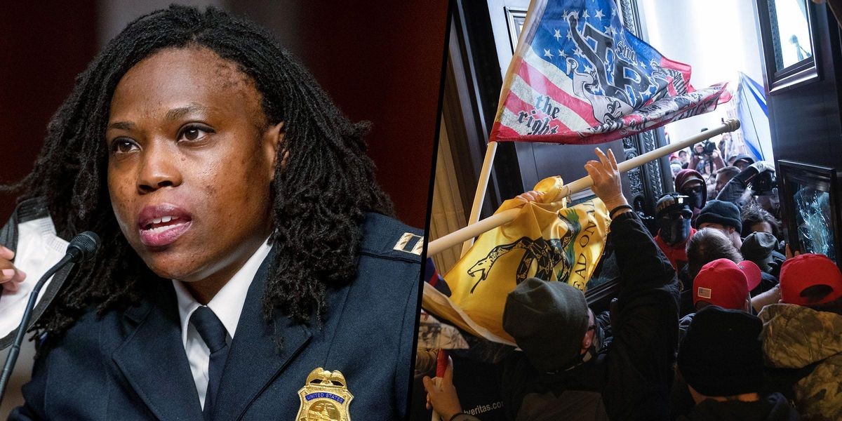 Police Captain Reveals Grisly New Details of Capitol Riot at First Official Hearing on Insurrection