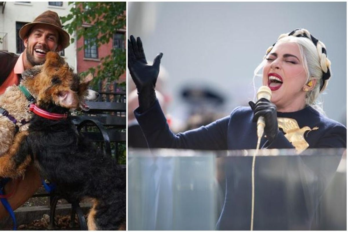 Lady Gaga's dog-walker is recovering after assailants shot him and stole her two French bulldogs