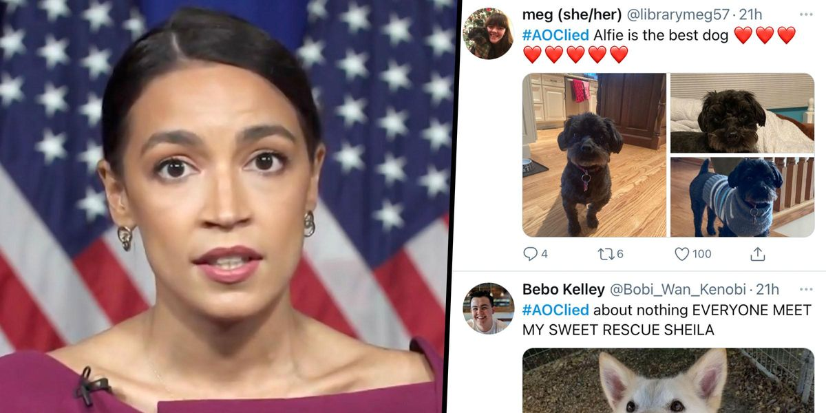 AOC Supporters Are Flooding the #AOCLied Hashtag With Pet Photos