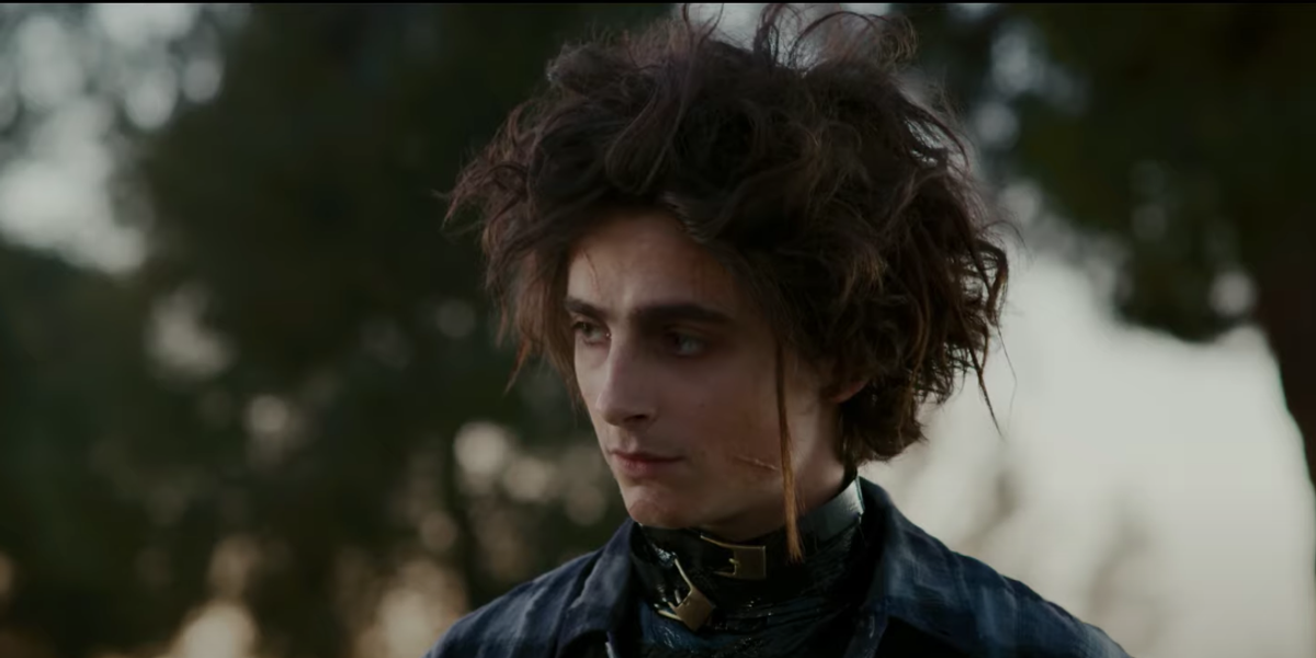 Timothée Chalamet Plays Edward Scissorhands' Son