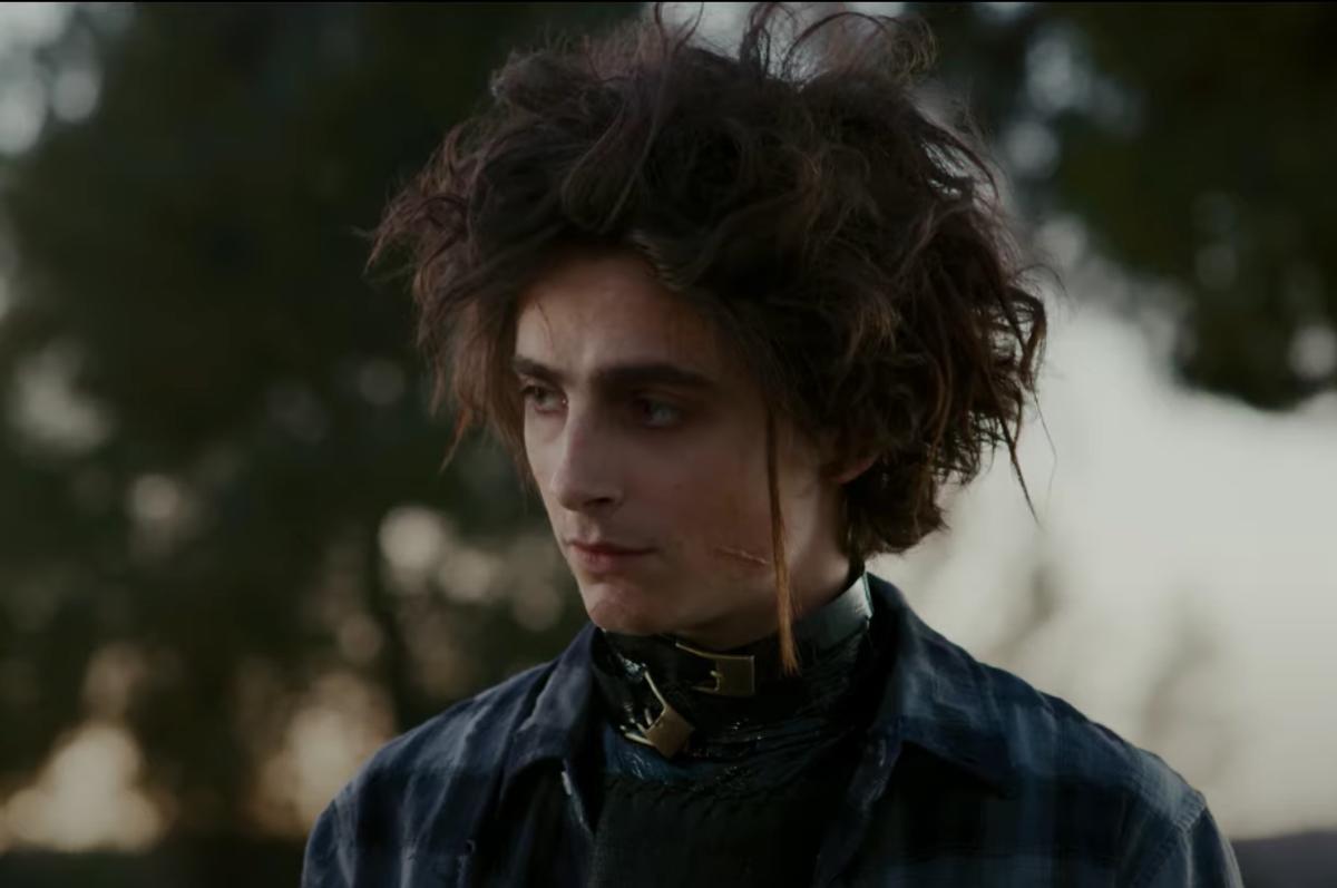 Timothée Chalamet Plays Edward Scissorhands' Son