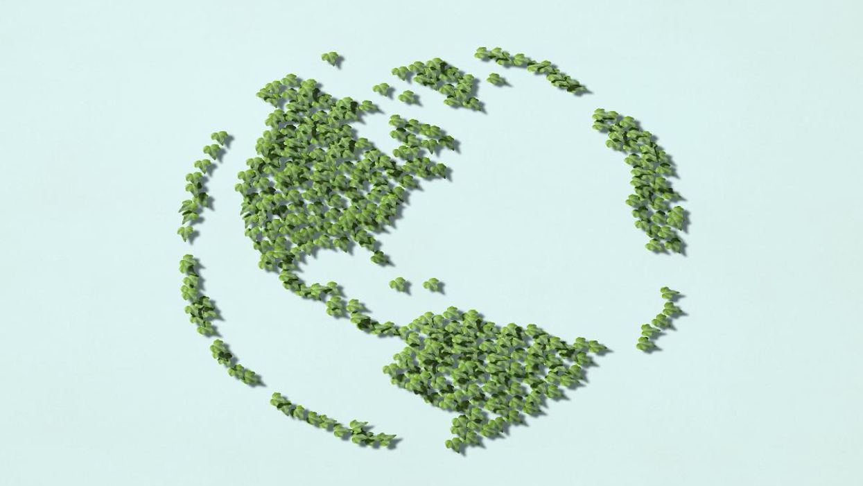 Choosing the Best Carbon Offset Programs of 2021
