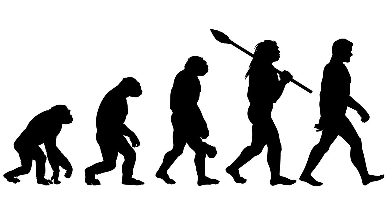 Surprising new feature of human evolution discovered