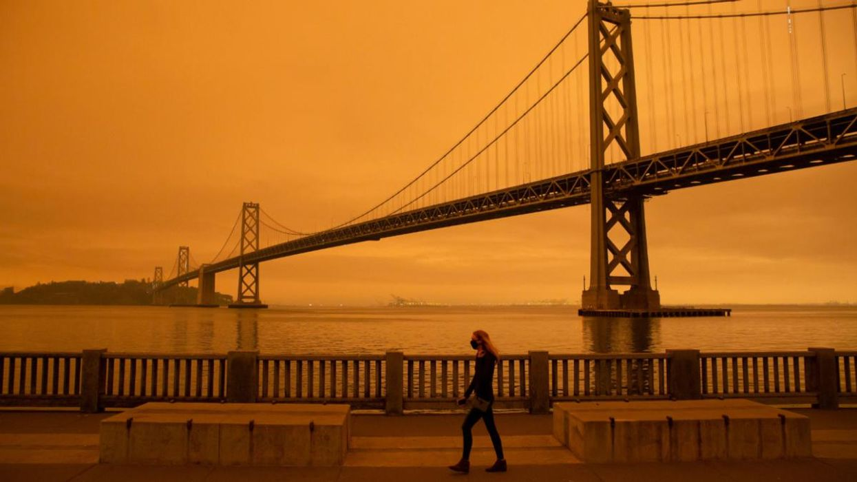 Wildfire Smoke Is More Toxic Than Other Forms of Air Pollution, Study Finds