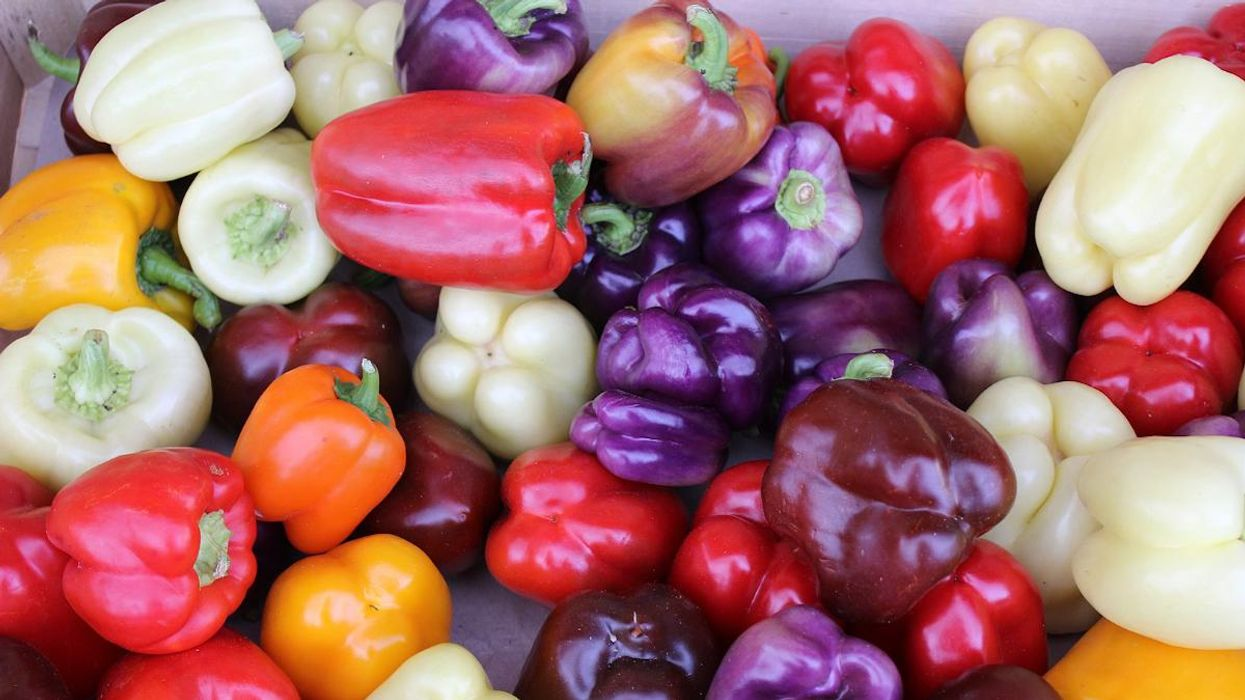 Want to Avoid Pesticides? Check Out This Annual Produce Guide