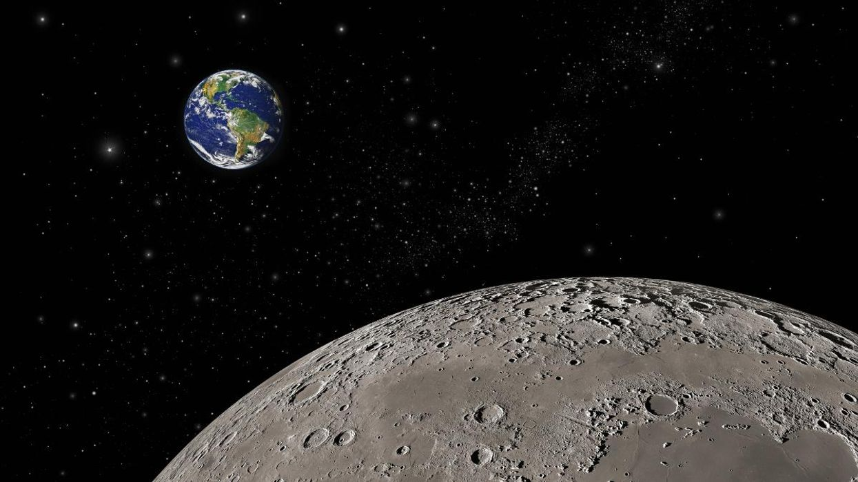 Scientists Want to Build a Solar-Powered Ark on the Moon to Protect Earth Species