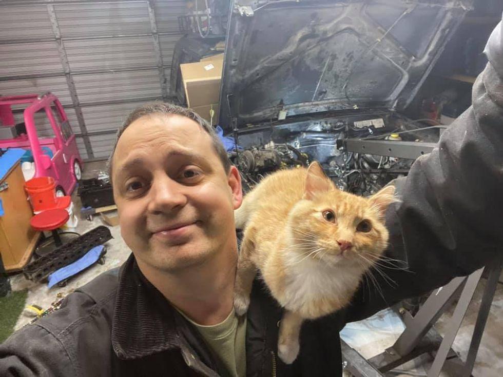 cat, ginger, shoulder cat, jeep, man
