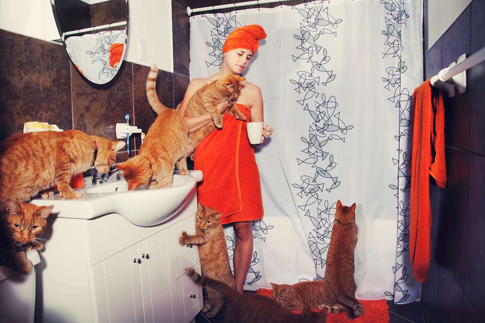 At Home With Crazy Cat Lovers and Their Crazy Cats