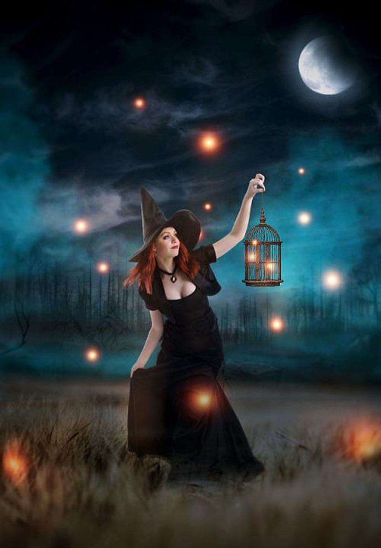 https://www.maxpixel.net/Hunt-Moon-Female-Woman-Witch-Forest-Fireflies-6013545