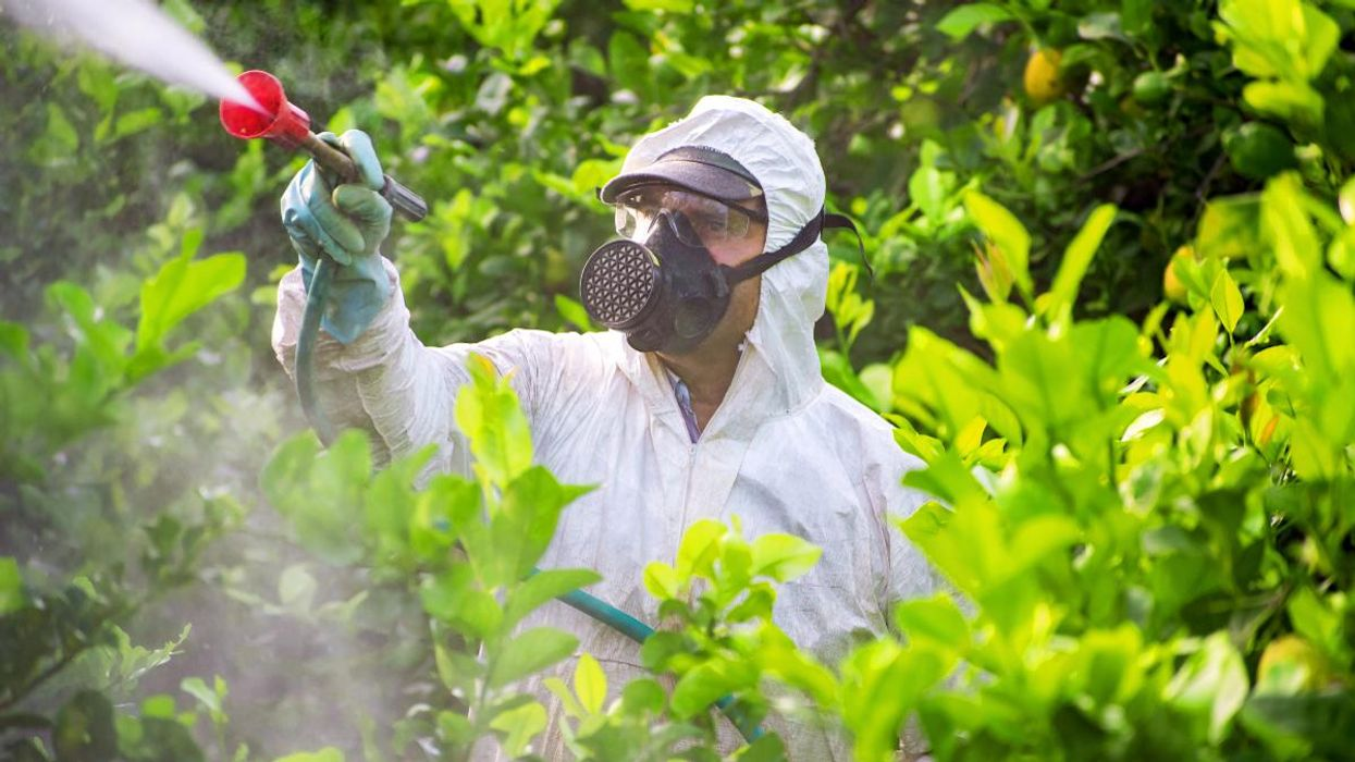 64% of World's Farmland at Risk From Pesticide Pollution, Study Finds