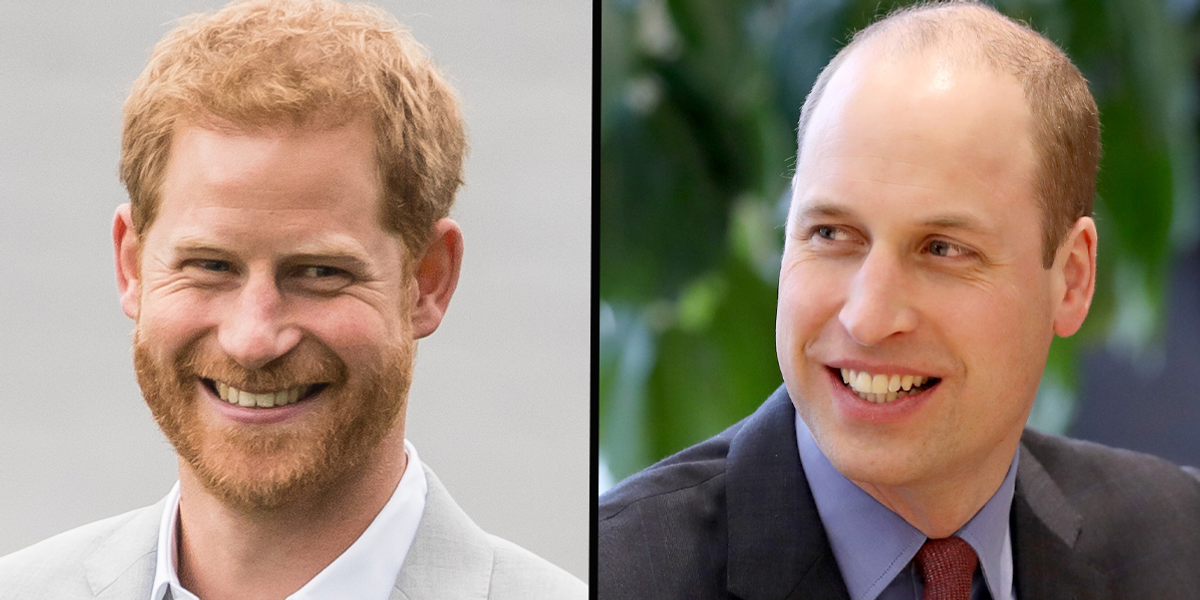 Princes Harry and William Have a 'Secret Sister' That Nobody Knows About