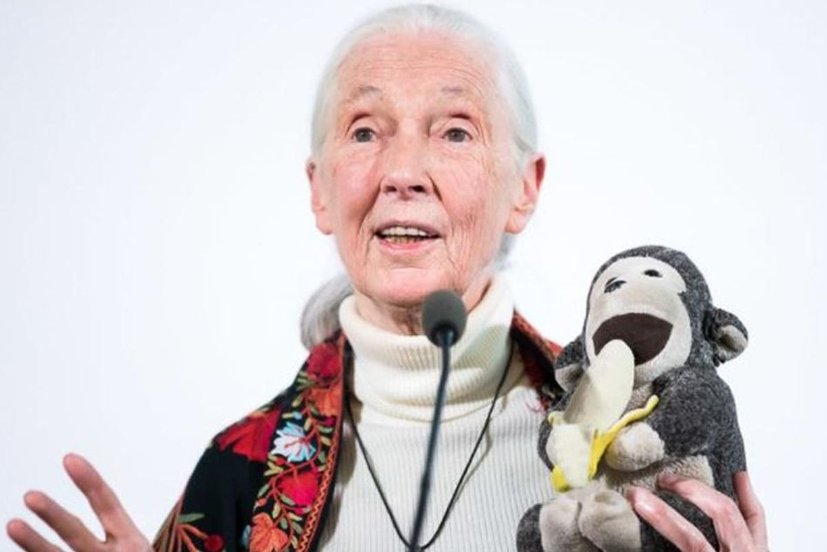Jane Goodall shares her secrets on how to lead a full life