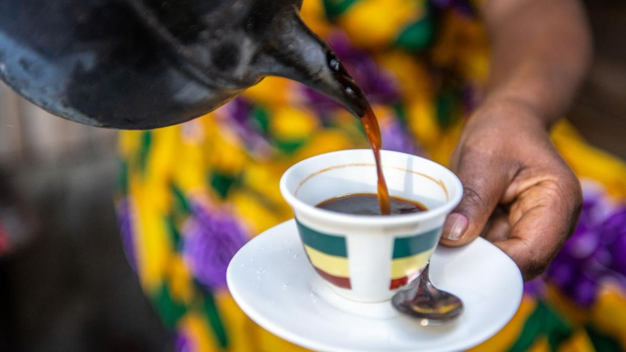 Study: Climate Change Could Impact Your Favorite Cup of Coffee