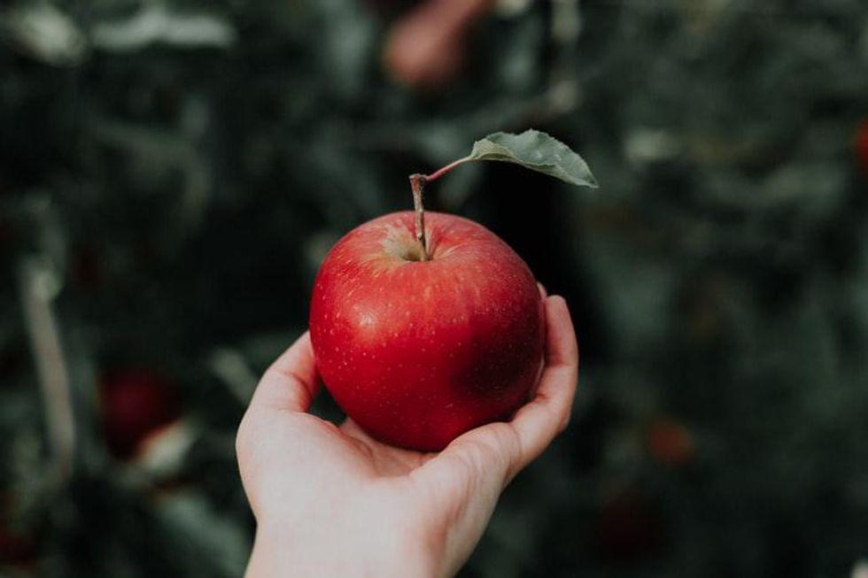 In Defense of Snow White