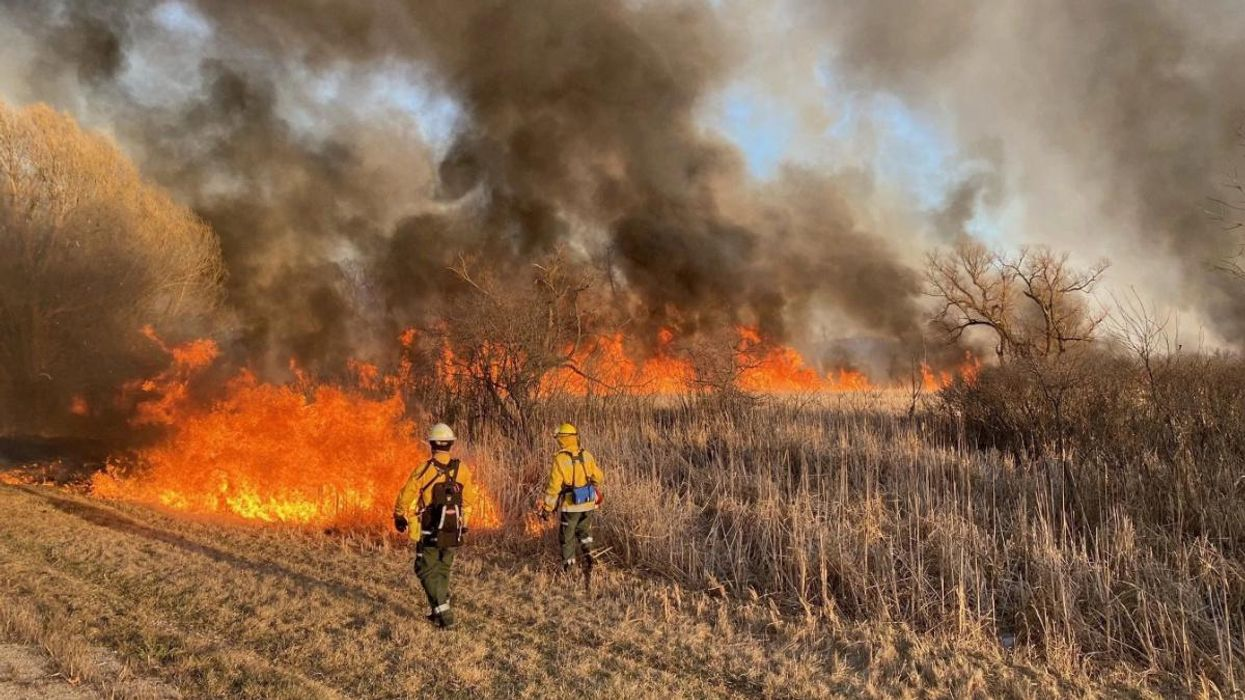 Wisconsin Declares State of Emergency Due to High Wildfire Risk
