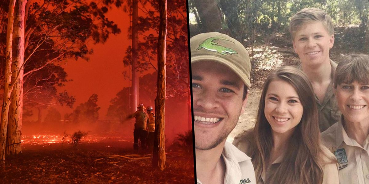 The Irwins Helped Over 90,000 Animals During the Australian Bushfires Last Year and We Don't Talk About It Enough