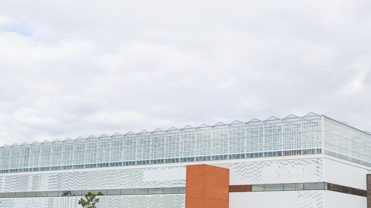 Feeding a City From the World's Largest Rooftop Greenhouse