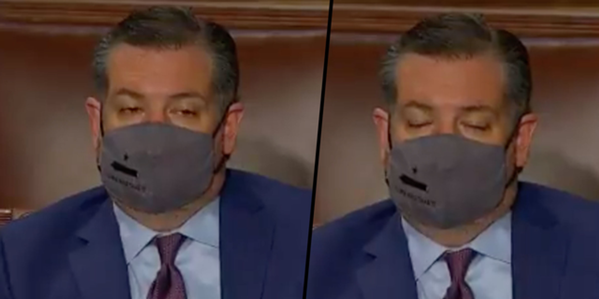 Ted Cruz Appeared to Doze off During Joe Biden's First Joint Address to Congress