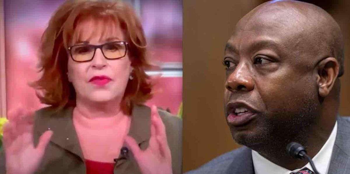 White TV show host Joy Behar actually says black US Sen. Tim Scott doesn't get difference between a 'racist country' and 'systemic racism'