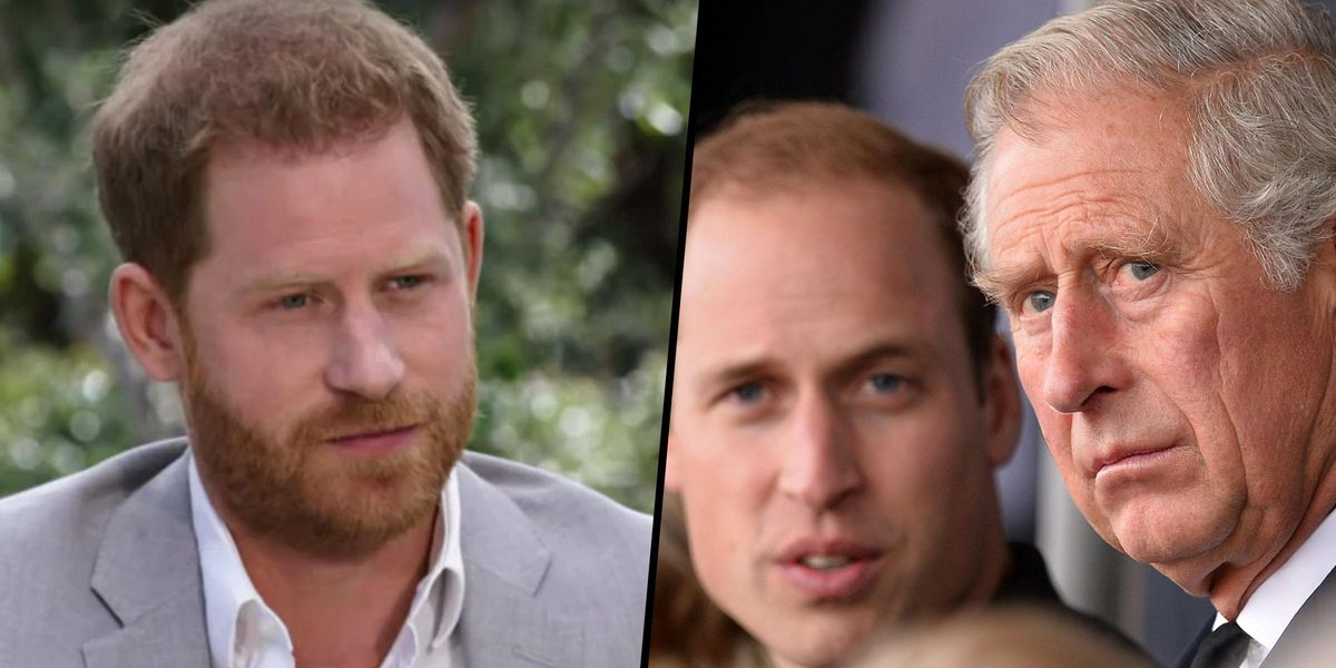 Prince Harry 'Went Too Far' and William and Charles Won't 'Extend Open Arms Again', Expert Says