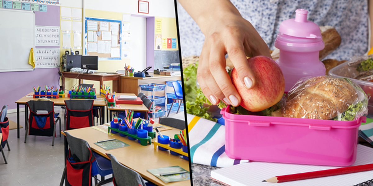 Mom Furious After 'Unprofessional' Teacher Sends Home Rude Note Slamming Son's 'Unhealthy' Lunchbox