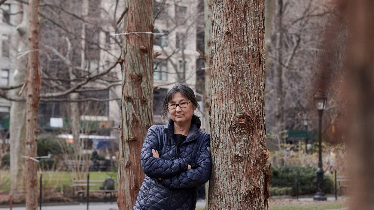 Maya Lin's Ghost Forest in the shadow of Shake Shack