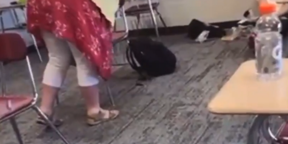 Teacher reportedly placed on leave after she was caught on video scolding student for not wearing a mask: 'You're a jerk!'