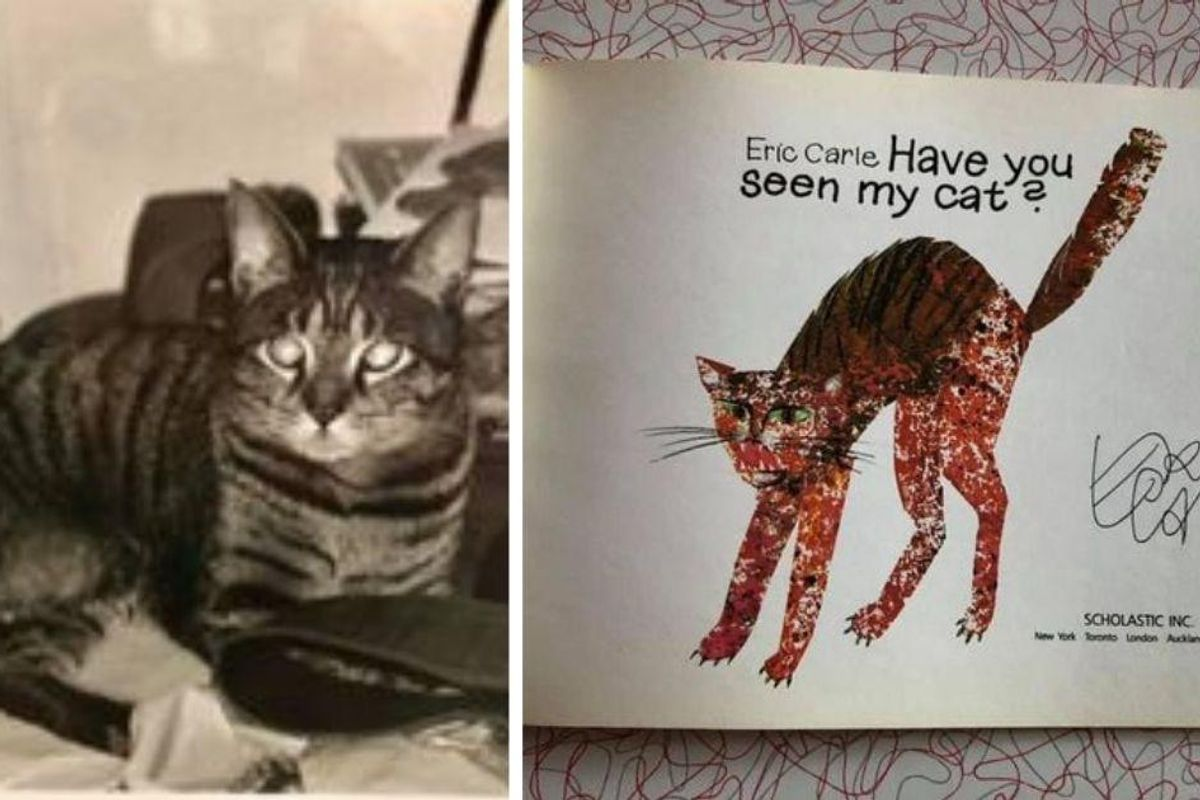 People can't get enough of this sweet story of Eric Carle responding to a lost cat sign