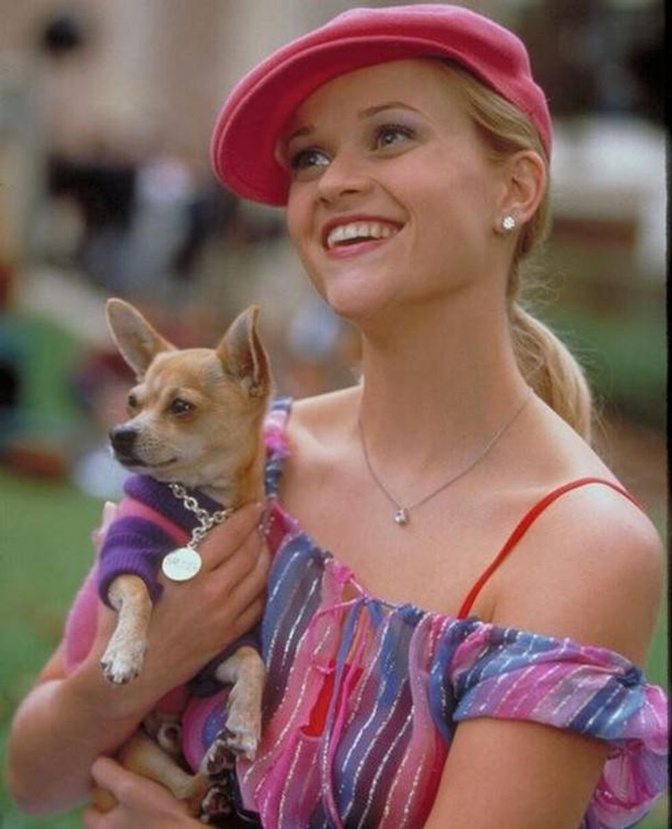 """""""Legally Blonde"""" Will Always Be One Of My Favorite Movies Because Of How Inspiring And Empowering It Is"""