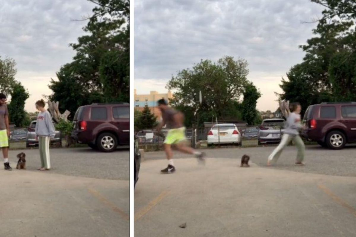 Couple shares hilarious viral video challenge to find out which person your dog loves best