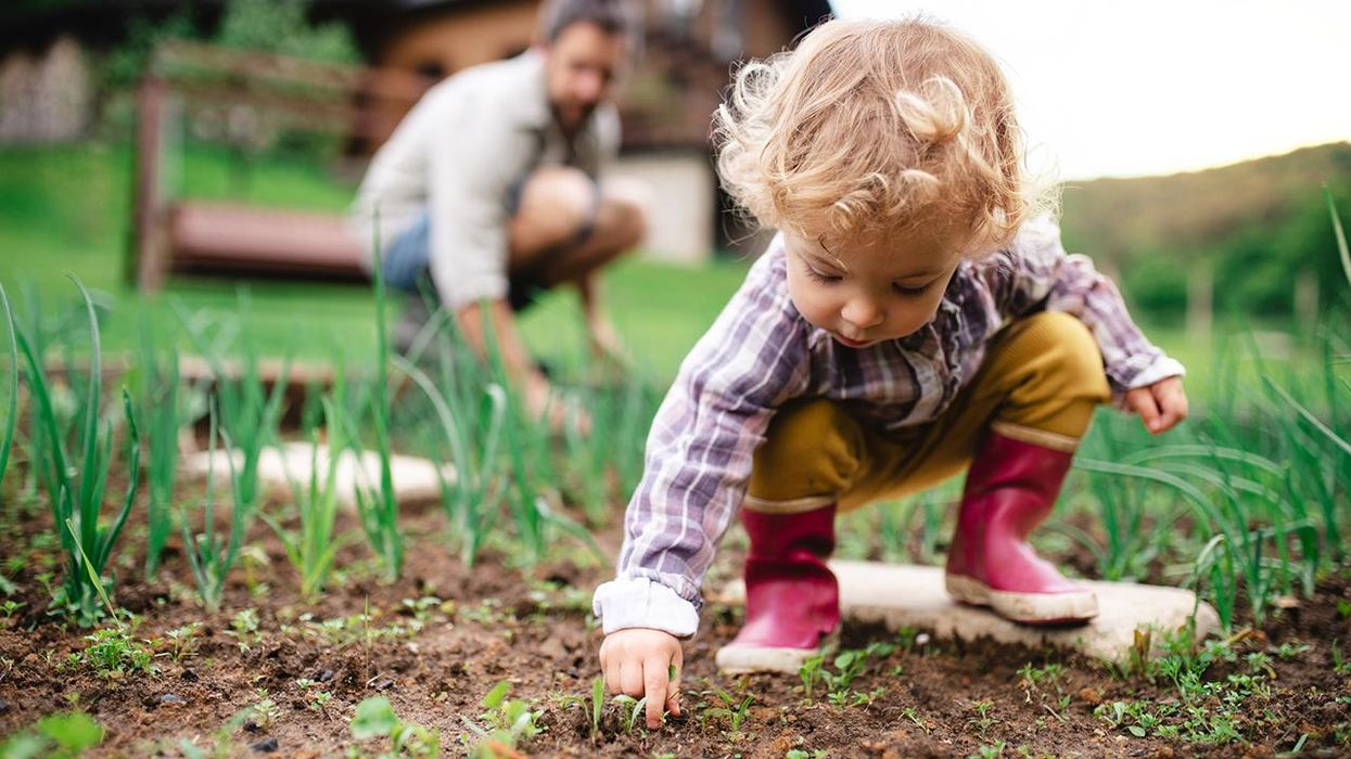 7 Educational Nature Activities for Kids You Can Do at Home This Summer