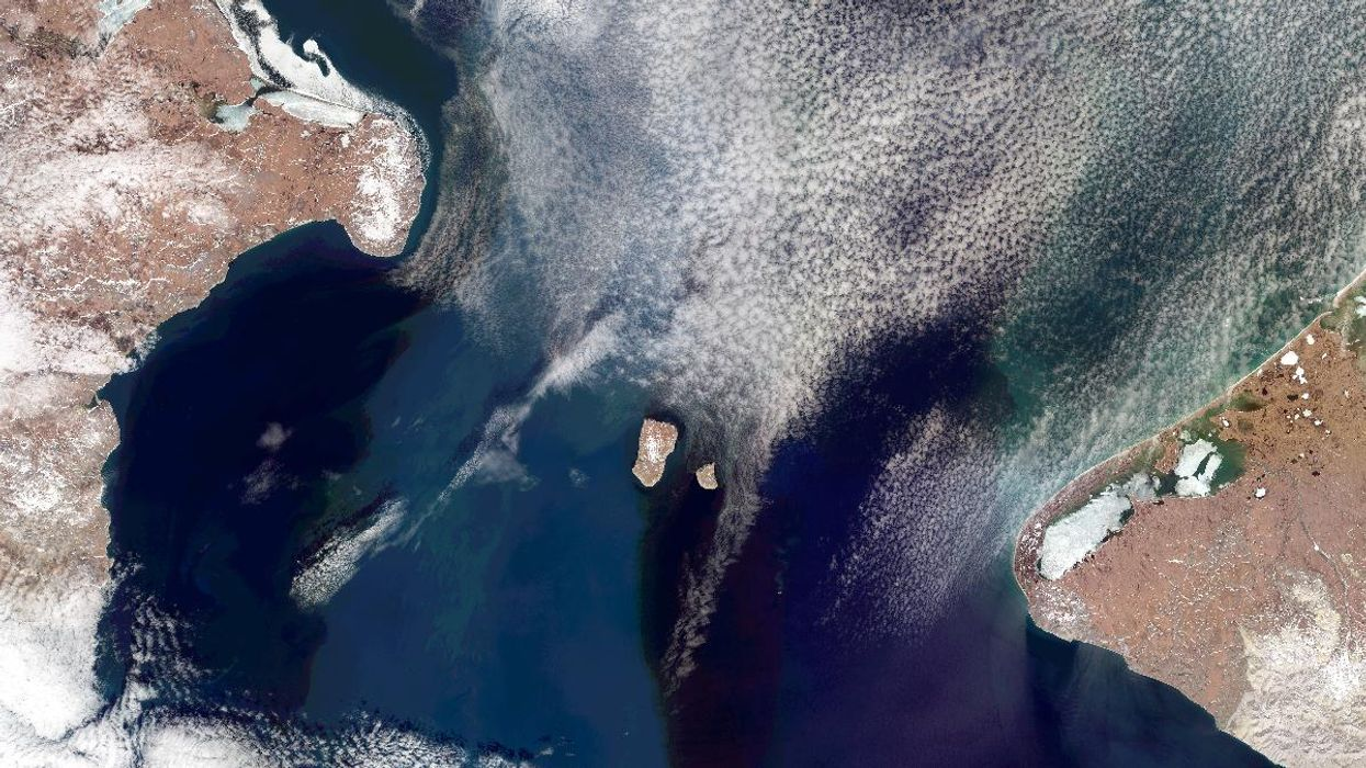 Dead Zones Have Recurred in the North Pacific for the Last 1.2 Million Years