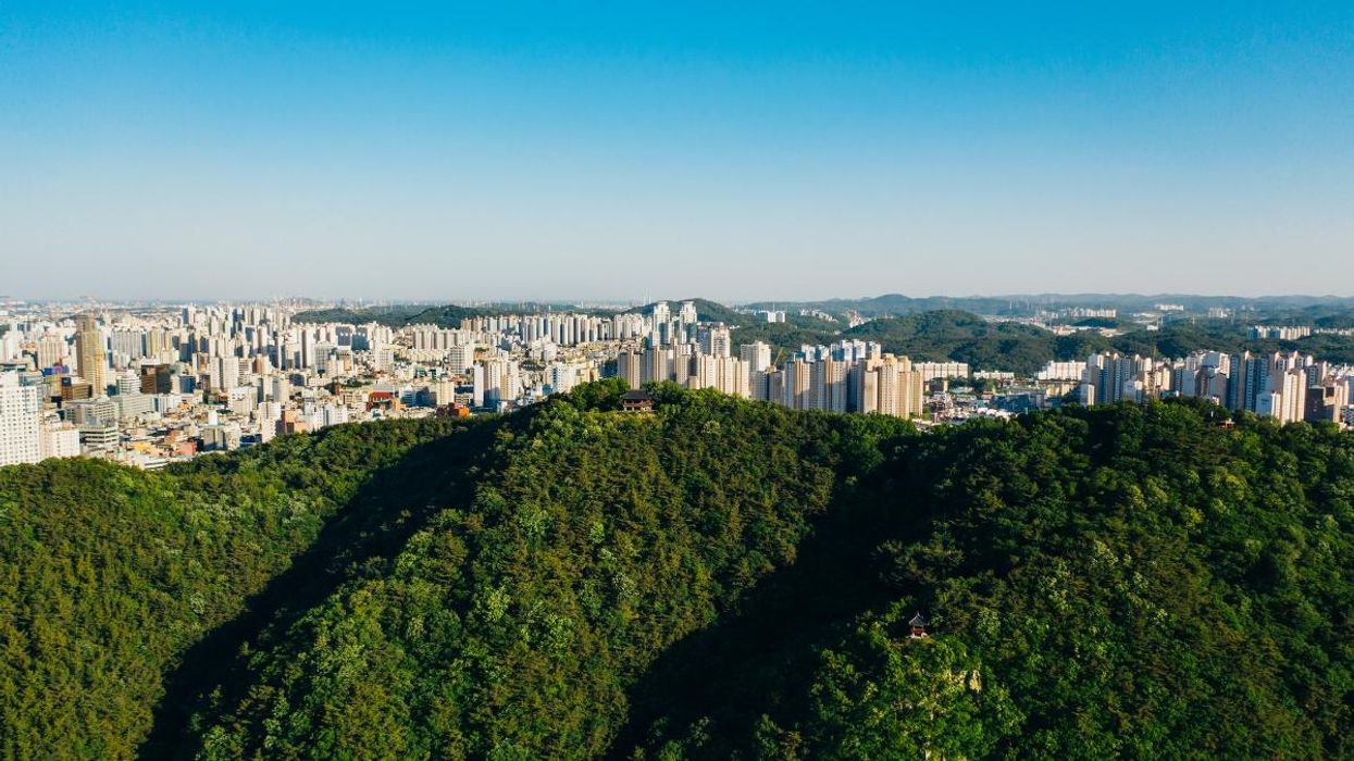 South Korea to Plant 3 Billion Trees to Help Reach Carbon Neutrality by 2050