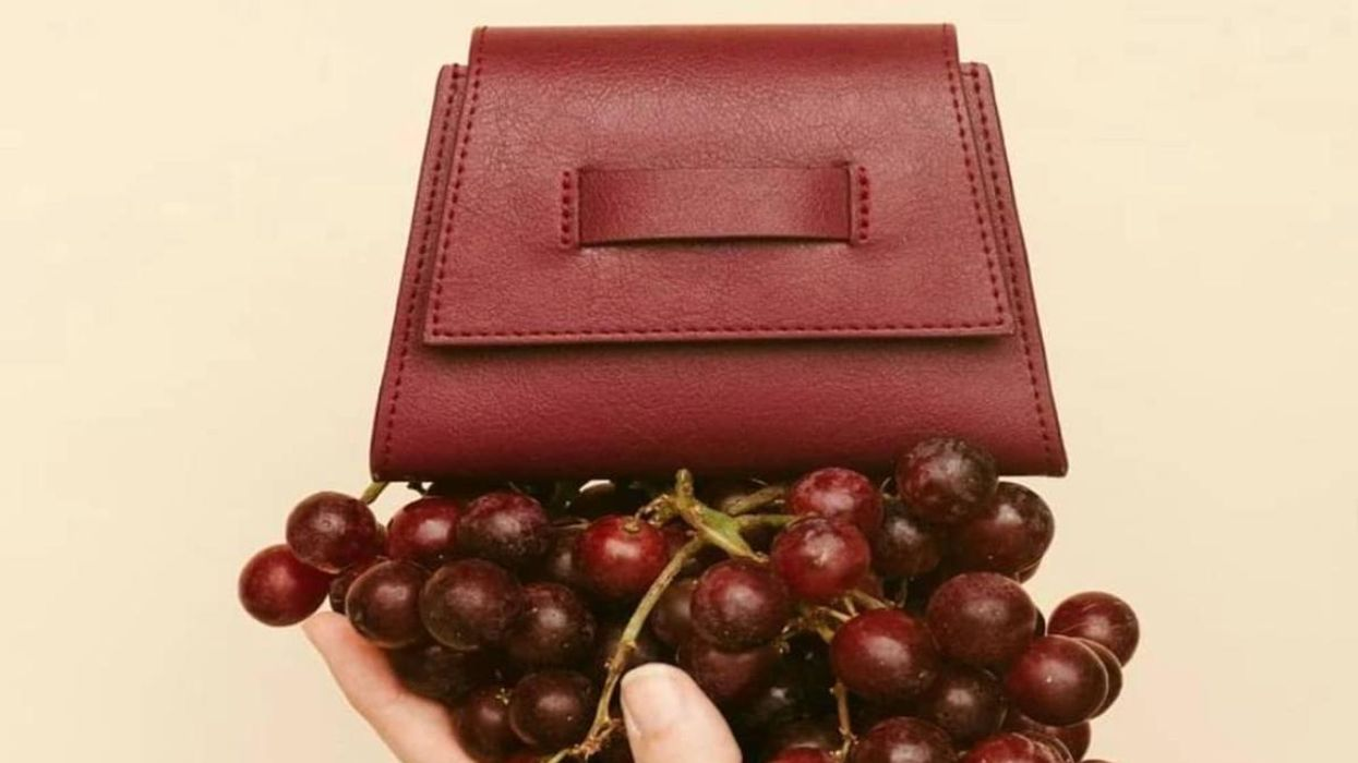 New Vegan Leather Is Made From Wine Grapes