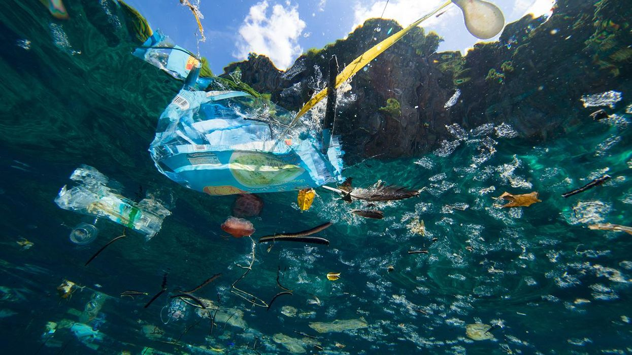 Ocean Plastic: What You Need to Know