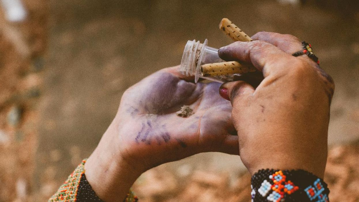 Indigenous Languages Are Going Extinct and Taking Knowledge of Medicinal Plants With Them
