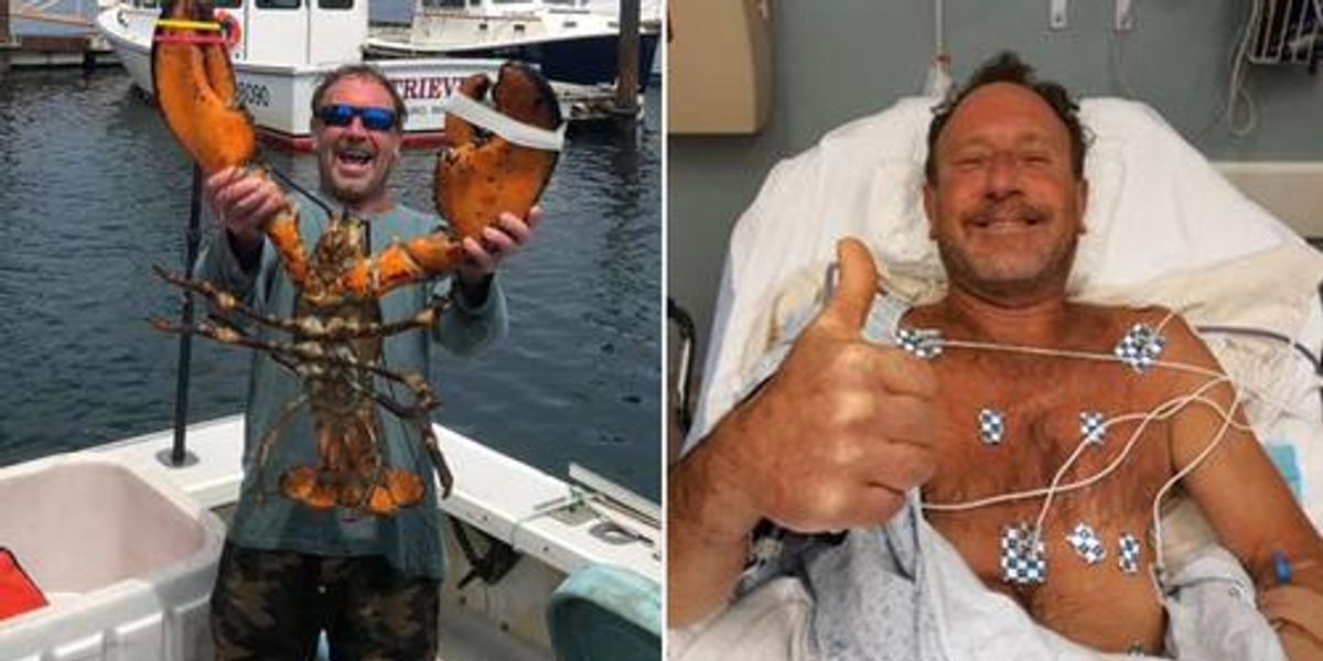 Lobster Diver Says He Was Nearly Swallowed by Whale Near Cape Cod